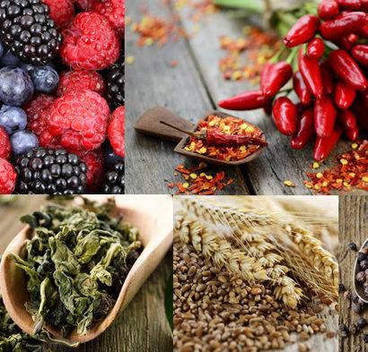 5 migliori alimenti METABOLISMO