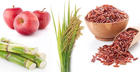 come controllare il colesterolo con sostanze naturali