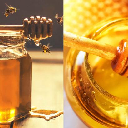 miele proprietà rimedio