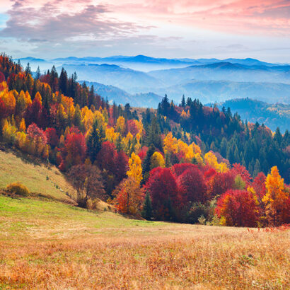 benefici camminare autunno